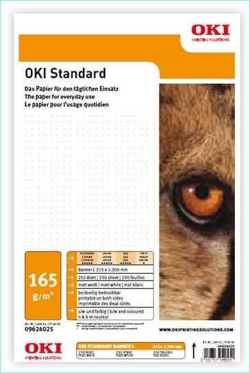 09624095 OKI Standard M-B-252 Banner 215 L - 252 g-m2 215 x 1.200 mm 250 Blatt - Matt beidseitig bedruckbar