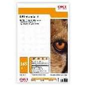 09624134 OKI Standard M-B-165 Banner 297 L - 165 g-m2 297 x 1.200 mm 100 Blatt - Matt beidseitig bedruckbar